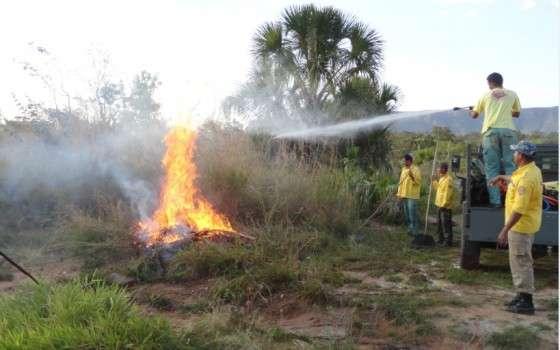 Monitoramento de incêndios florestais é intensificado em Goiás