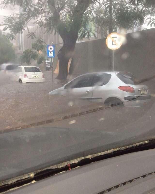 Chuva e vento forte derrubam árvores e deixam várias ruas alagadas em Goiânia