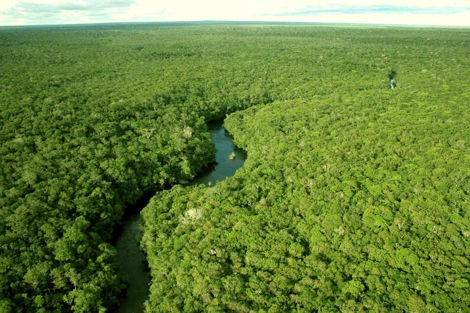Arqueólogos estudam evolução humana na Amazônia