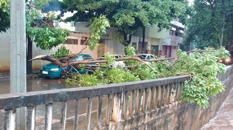 Temporal deixa ruas alagadas e assusta moradores de Itumbiara