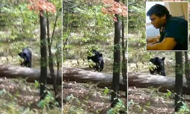 Jovem morto por urso nos EUA tirou fotos do animal antes de ser atacado