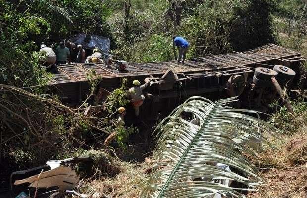 Caminhão carregado com vacas cai de ponte e deixa duas pessoas feridas