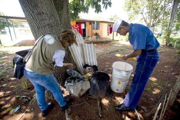 Governo pede que famílias abram suas casas para mobilização contra Aedes