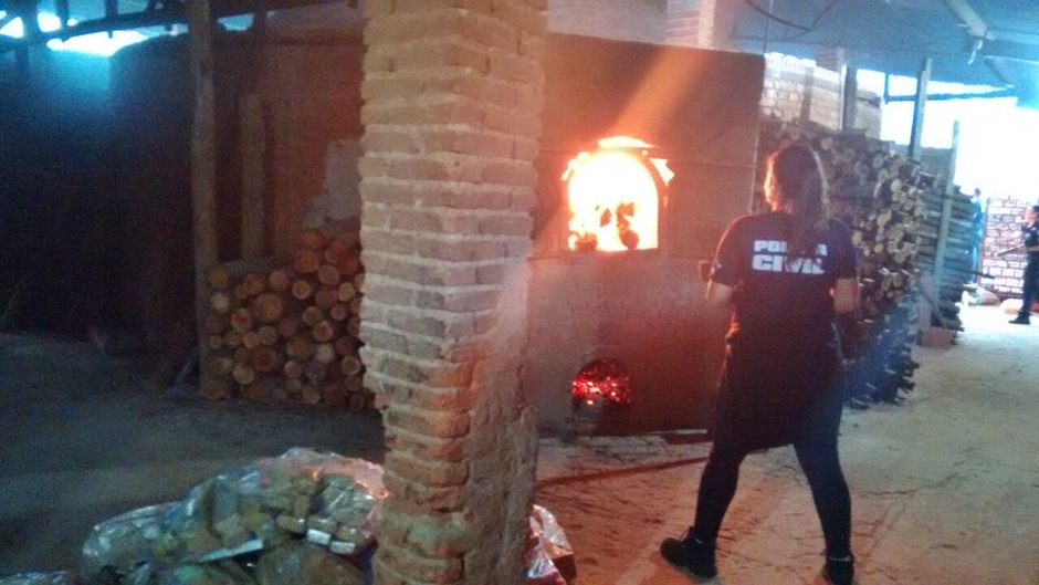 Polícia incinera mais de 5 toneladas de drogas apreendidas