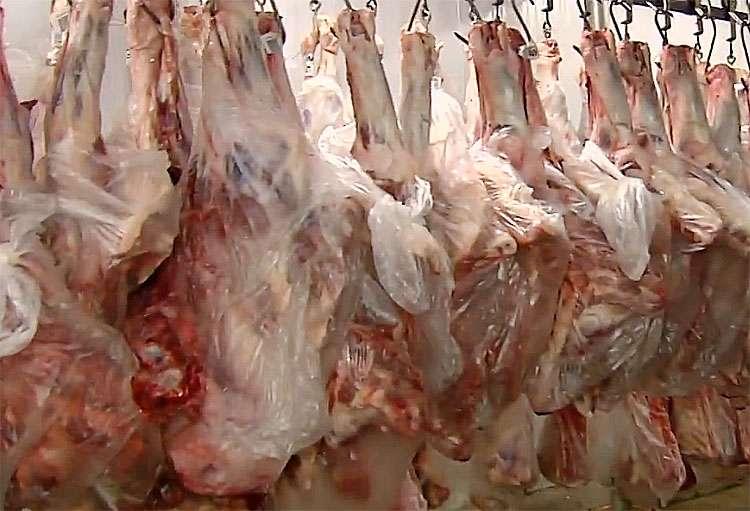 Polícia Militar recupera seis toneladas de carne roubadas