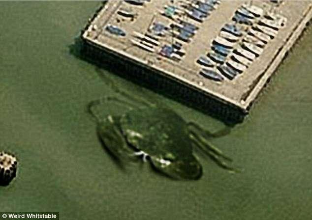 Suposto caranguejo gigante de 15 m é avistado na Inglaterra