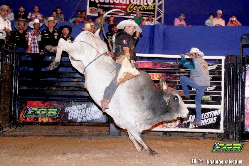 1º Rodeio Show de Goiânia acontece neste fim de semana!