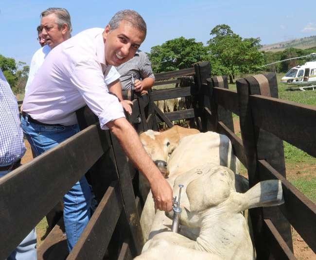 Vice-governador lança segunda etapa da campanha de vacinação contra febre aftosa