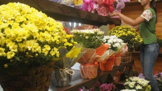 Variação no preço das flores chega a 130% em Goiânia