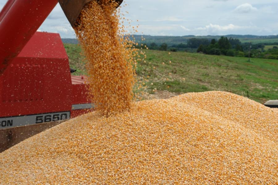 Carga irregular de milho é apreendida em Mineiros