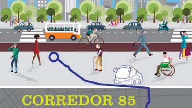 Ônibus começam a circular no corredor preferencial da Avenida 85 neste sábado