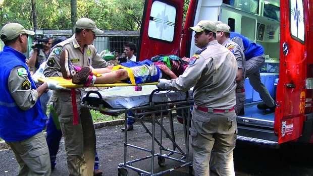 Menino atacado por tigre no Paraná tem alta
