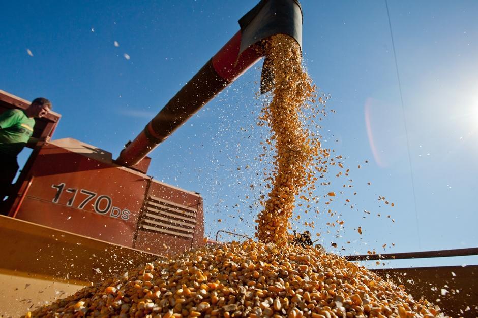 Governo de Goiás revoga normas que tributavam exportações de soja e milho