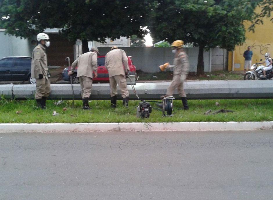 Bombeiros encontram corpo em decomposição dentro de poste em Goiânia