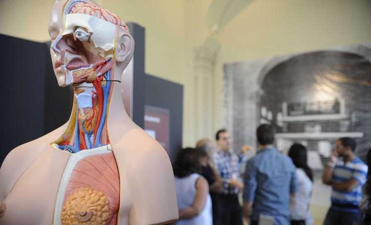 Governo autoriza abertura de 2.290 vagas de medicina em instituições privadas