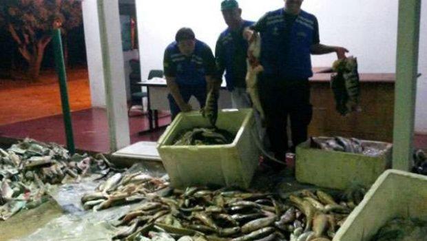 Fiscalização apreende mais de 400kg de peixe