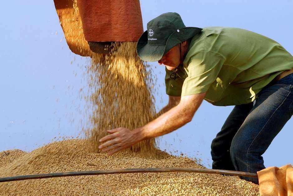 Agropecuária lidera geração de empregos formais em Goiás, diz Caged