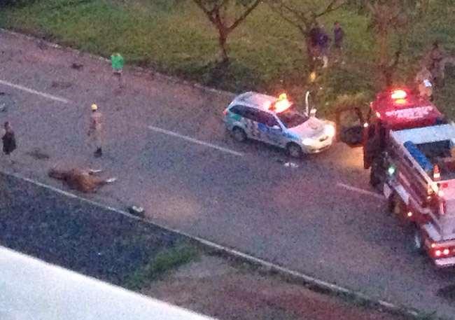 Duas pessoas ficam feridas após carro atropelar cavalo, no Goiânia II
