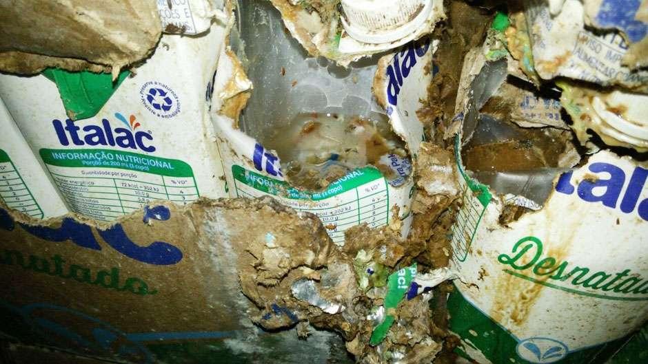 Atacado é interditado após fiscais encontrarem 3 mil litros de leite estragado, no Setor Rodoviário