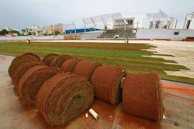 Estádio Olímpico recebe grama e será inaugurado em fevereiro