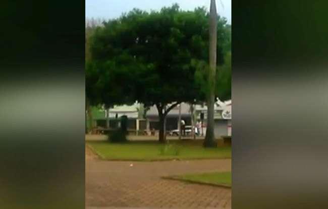 Homem morre após ser atacado por enxame de abelhas em praça de Bela Vista de Goiás