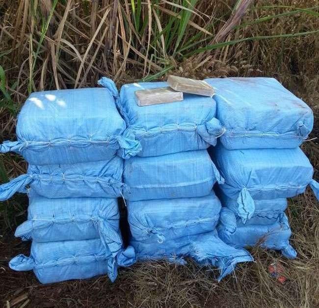 Polícia apreende 500kg de cocaina que eram transportadas em avião