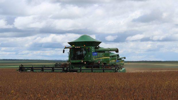 Colheita da soja chega a 50% da área cultivada em Goiás e plantio do milho safrinha avança