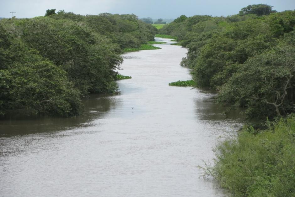 Criança de 6 anos morre afogada no Rio Capivari