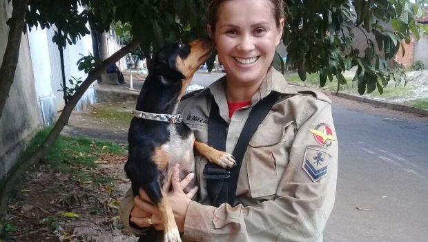 Bombeiros de Goiânia resgatam cadela que caiu em bueiro no Setor Santo Hilário