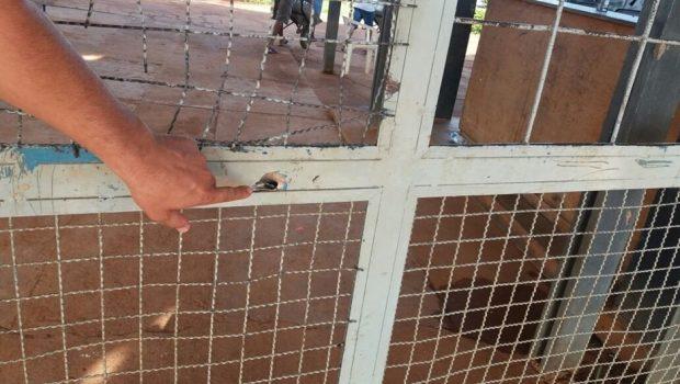 Após ataque a unidade de regime semiaberto, adolescente consegue fugir