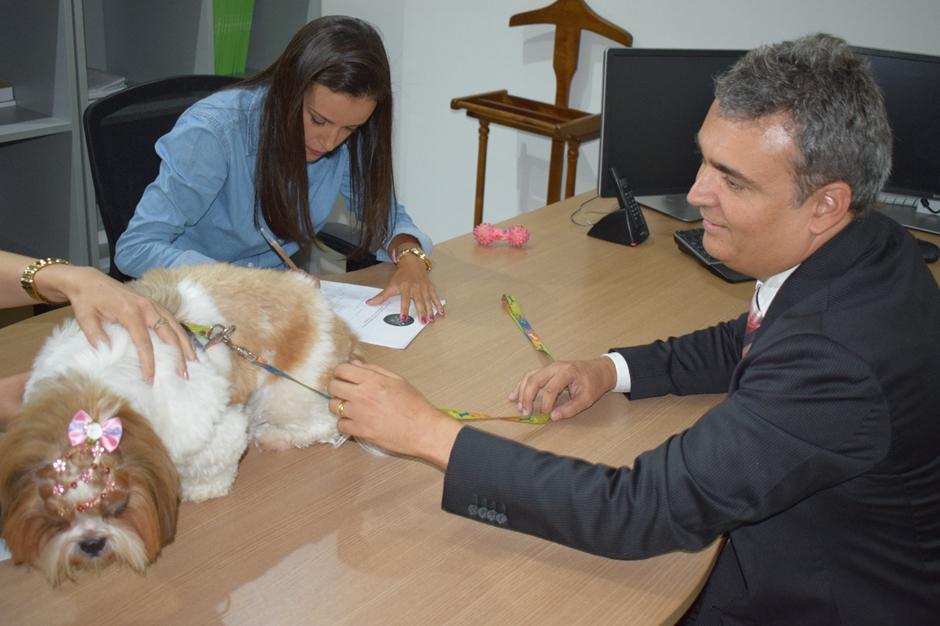 Animais de estimação agora podem ser registrados em cartório de Goiânia