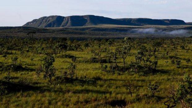 MPF dá prazo para que Goiás apresente dados sobre ampliação de parque no Cerrado