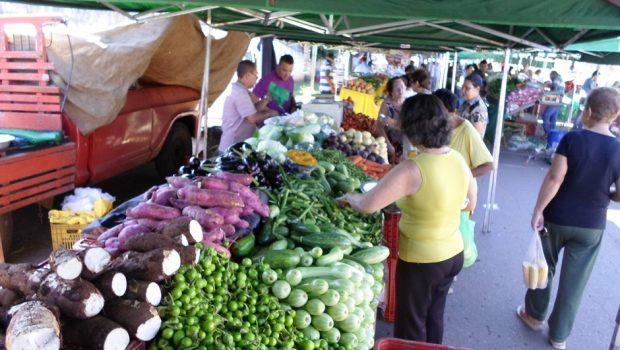Alimentos e habitação pressionam a inflação em Goiânia no mês de março