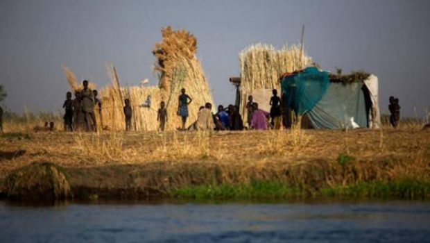 Mais de 100 milhões de pessoas sofrem de grave insegurança alimentar, alerta FAO