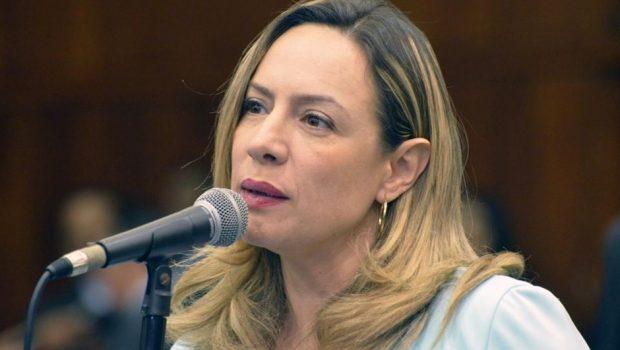 Eleição de Lula é prioridade para o PT em todo o Brasil, afirma Adriana Accorsi