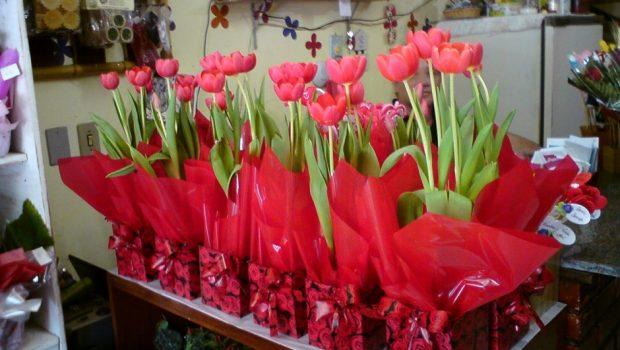 Presentes para o Dia das Mães podem ter variações de até 250% nos preços