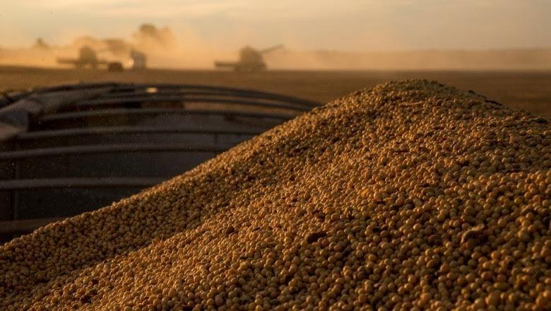 Safra de grãos deve chegar a 237 milhões de toneladas