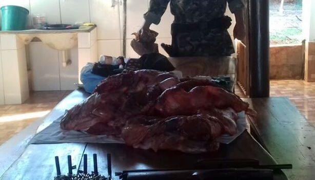 Polícia apreende 50 kg de carne de animal silvestre em Montes Claros de Goiás
