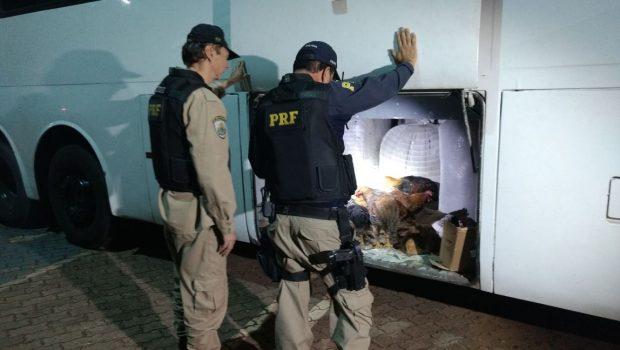 Homens oriundos de Bangladesh são presos com mercadorias contrabandeadas, em Valparaíso