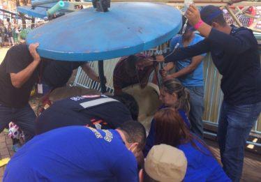 Responsável pela manutenção do Twister era funcionário da limpeza, diz delegado