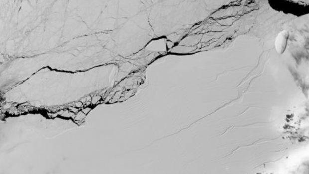 Cientistas ainda estudam consequências de iceberg gigante na Antártica