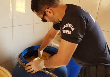 Vereador é preso por fabricação clandestina de queijos, em Caldazinha