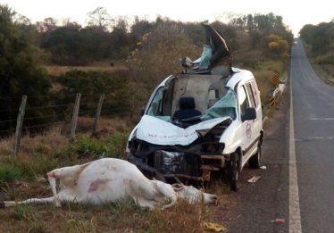 Ambulância atropela vaca na GO-156; duas pessoas ficaram feridas