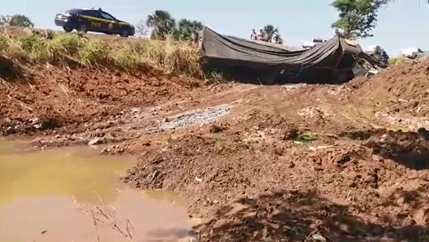 PRF detém idoso responsável por animais envolvidos em acidente com caminhão, em Abadia de Goiás