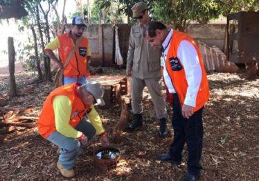 Região Noroeste de Goiânia recebe força-tarefa no combate ao Aedes