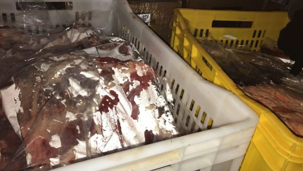 Procon Goiânia e Vigilância Sanitária interditam supermercado por vender produtos vencidos