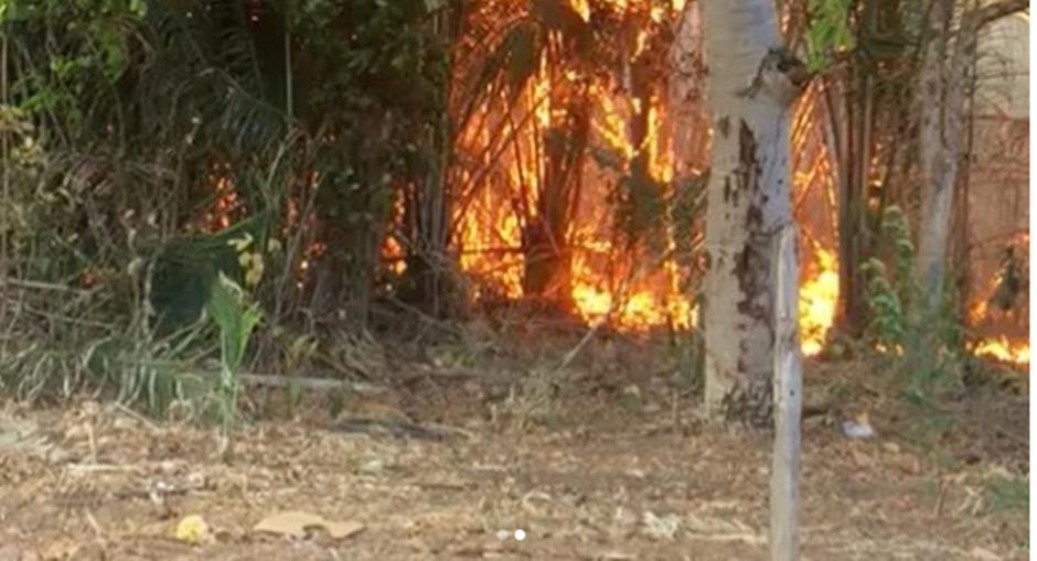 Número de queimadas cresce 37% em Goiás