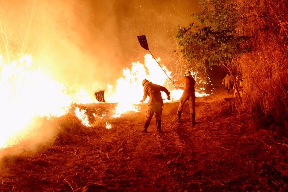 Incêndio no Parque Altamiro de Moura Pacheco é controlado após uma semana