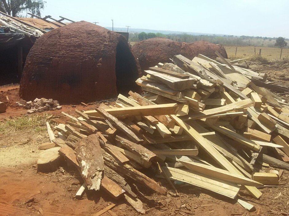 Cerca de duas toneladas de madeiras irregulares são apreendidas em Caçu