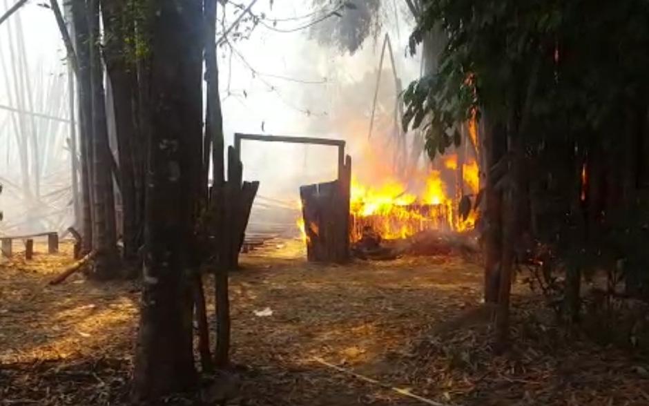 Incêndio atinge bambuzal dentro do Parque Areião, em Goiânia; veja vídeos
